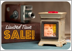 Scentsy Product Sale