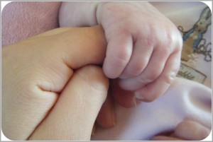 Tiny baby hands with Mommy