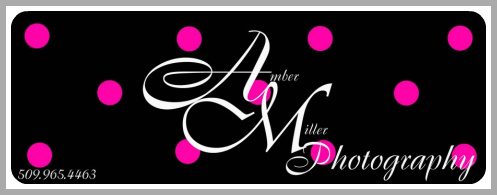 Amber Miller Photography Logo