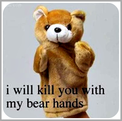 Funny Bear Hands