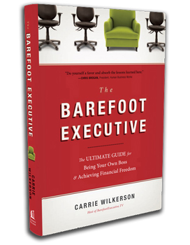 The barefoot executive, book, business book,