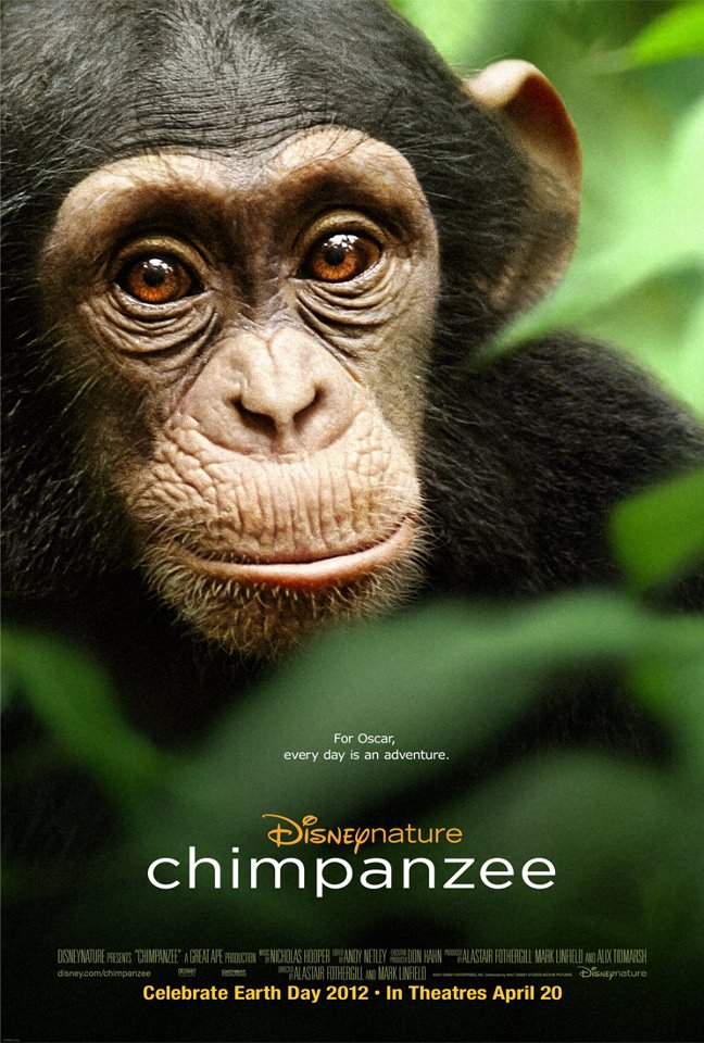 Chimpanzee by Disney