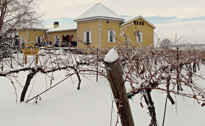 Winter Wine Tour