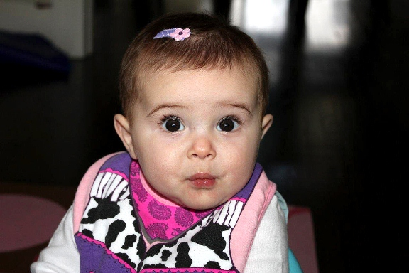 Baby Bibs, Funny Bibs, funny gifts for babies