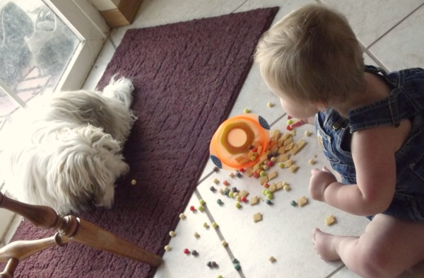 toddler sharing snacks with a puppy