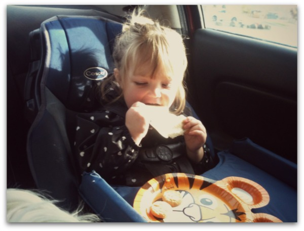 Toddler loves safeway kidsfresh frozen kids meals in the car