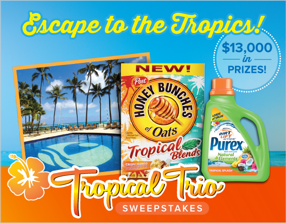 Bring the tropics into your life