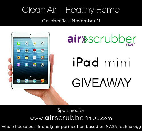 Air Scrubber Plus – Clean Air and Healthy Home iPad Mini Giveaway