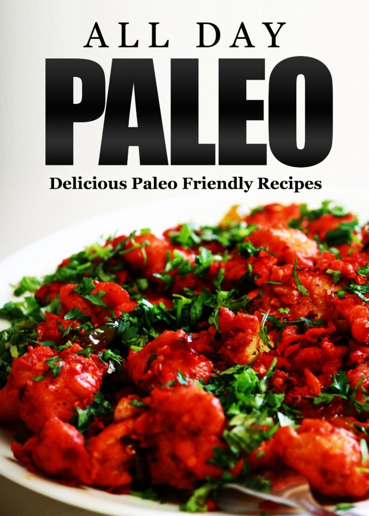 Everyday Paleo recipes