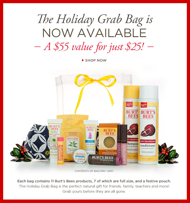 Burt's Bees Grab Bag deal