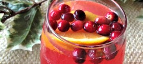 Cranberry and Pink Grapefruit Juice Punch Recipe