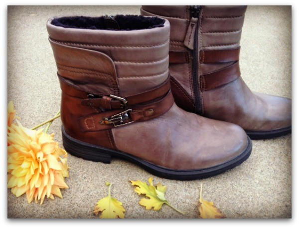 Pepperidge Fall Boot from Earth Footwear