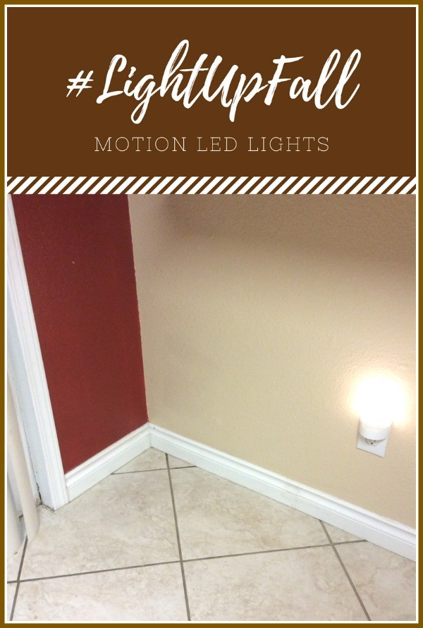 Light Up Fall with Motion LED Lights