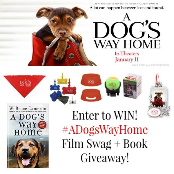 Win A Dog's Way Home Movie Swag and Book!