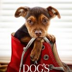 A Dog's Way Home - Film Opens Jan 11, 2019 - Movie Swag Giveaway!!